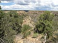 A view from above the Balcony House, Mesa Verde National Park, CO, United States - panoramio.jpg