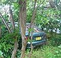 Abandoned Hyundai Excel (6331772836).jpg