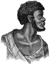 Aborigines of Victoria - Fig 250 - Kertamaroo (King John).jpg