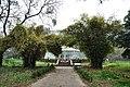 Acharya Jagadish Chandra Bose Indian Botanic Garden - Howrah 2011-02-20 1626.JPG