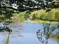 Across Llyn Moelfre - geograph.org.uk - 419670.jpg