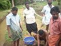 Adat Ombathumuri Paadam Thrissur DSCN0906.JPG