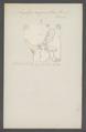 Aegilips - Print - Iconographia Zoologica - Special Collections University of Amsterdam - UBAINV0274 047 03 0006.tif
