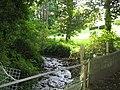 Afon Marchogion from the path footbridge - geograph.org.uk - 550089.jpg