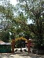 Akkare temple kottiyoor gate.jpg