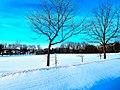 Aldo Leopold Park - panoramio (1).jpg
