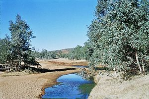 "Alice Springs - The ""springs"" that give the town its name"
