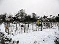 Allotments near Green Lane, Chislehurst - geograph.org.uk - 1655995.jpg