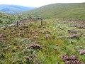 Along Eas Dubh - geograph.org.uk - 532984.jpg