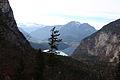 Altausseer See v stummernalm 78949 2014-11-15.JPG