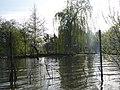 Amiens canotage dans les hortillonnages (14).JPG