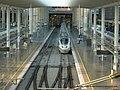 Ampliación de la Estación de Atocha (5374495240).jpg
