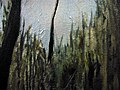 "Amy Feger, ""Panorama at Ebeneezer Swamp""oil on canvas (detail) 6 (3620128430).jpg"