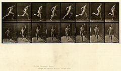 Animal locomotion. Plate 67 (Boston Public Library).jpg