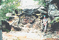 Anvil rock, Shawnee National Forest, IL.jpg