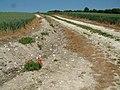 Arable land, Barford Down - geograph.org.uk - 183917.jpg