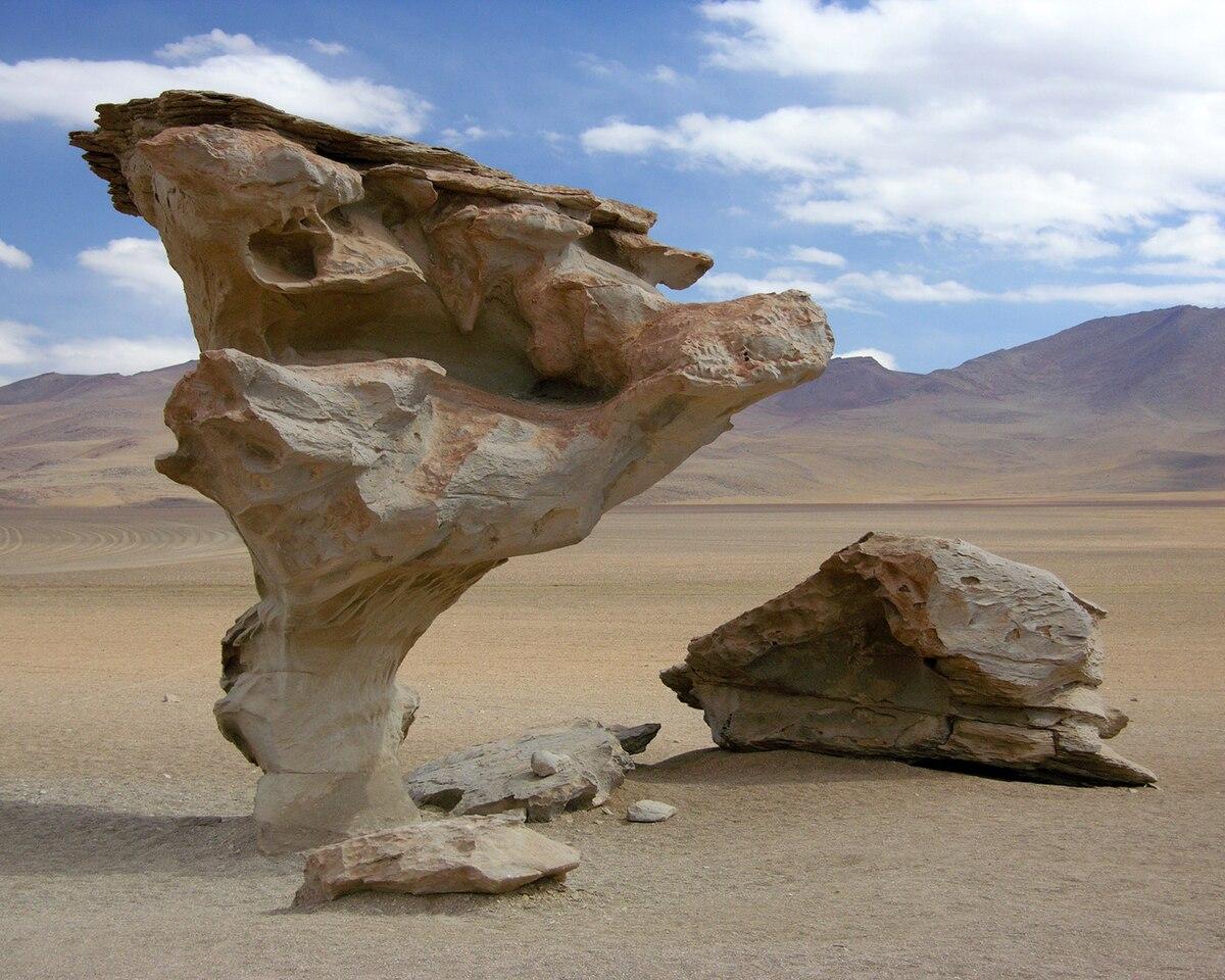 Arbol de Piedra.jpg