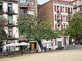 Arbres de l'amor de la plaça Joanic P1470975.JPG