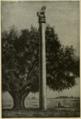 Asoka's Pillar.png