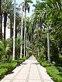 Aswan Botanical Garden 005.jpg