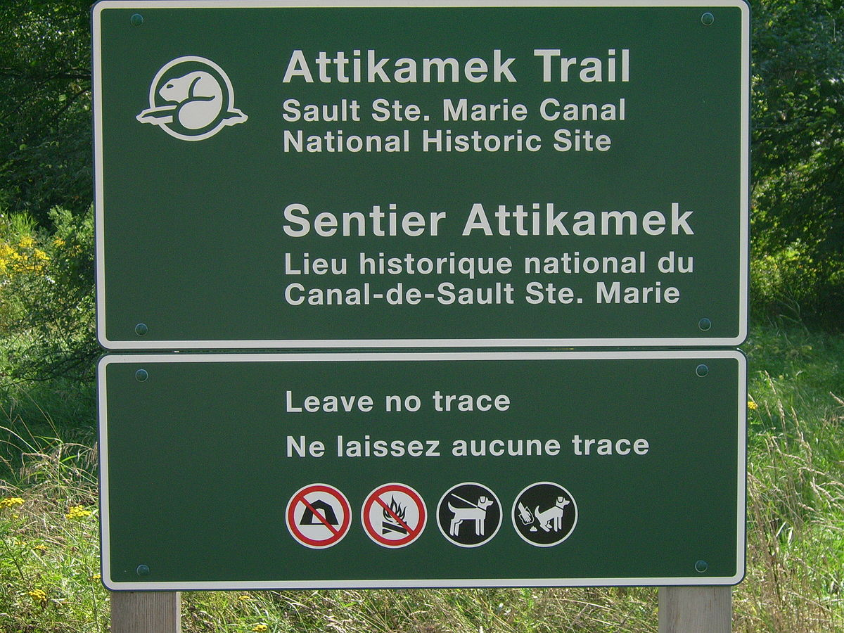 Leave No Trace Wikipedia