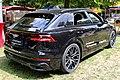Audi Q8 Monrepos 2018 IMG 0096.jpg