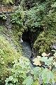 Austrian ravine (24875095835).jpg