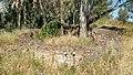 BA-Ruinas villa romana Pesquero. 02.jpg