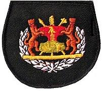 BDF Rank Warrant Officer class 1.jpg