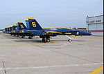 BLUE ANGEL DVIDS1078650.jpg