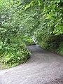 Back Lane From Saundersfoot - geograph.org.uk - 1413283.jpg