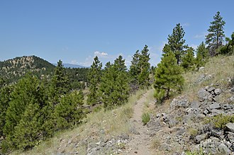Mount Helena City Park - Backside Trail in July 2018.