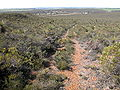 Badgingarra National Park view over Badgingarra.JPG
