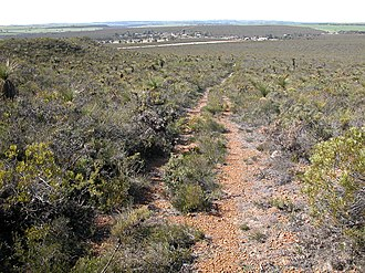 Badgingarra National Park - The view from a breakaway looking south-east towards the township of Badgingarra