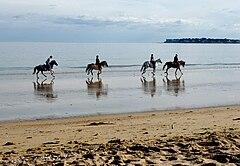 One example for Élément cartographique: Équitation