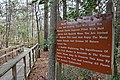 Bald Cypress Trail First Landing State Park-interpreter signage (33080790721).jpg