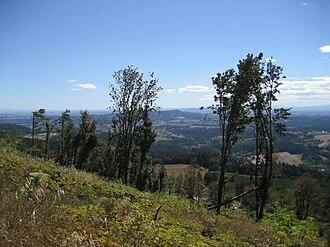 Chehalem Mountains - Image: Bald Peak looking southeast