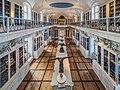 Bamberg Naturkundemuseum Vogelsaal 926449506HDR.jpg