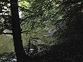 Banat, Nera Canyon - panoramio (34).jpg