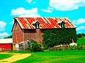Barn with Vines on it - panoramio.jpg