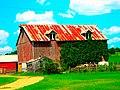 Barn with Vines on it - panoramio.jpg