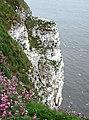Bartlett Nab, Bempton - geograph.org.uk - 813674.jpg