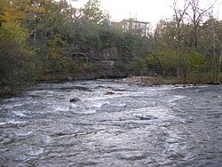 Beargrass Creek.jpg