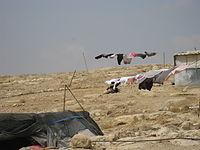 Bedouins IMG 1716.JPG