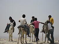 Bedouins IMG 1776.JPG
