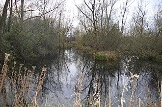 Wildlife Trust for Bedfordshire, Cambridgeshire and Northamptonshire - Image: Begwary Brook nature reserve 9