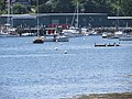 Belfast Maine waterfront image 5.jpg