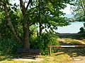 Bench With Cherry Tree - panoramio.jpg