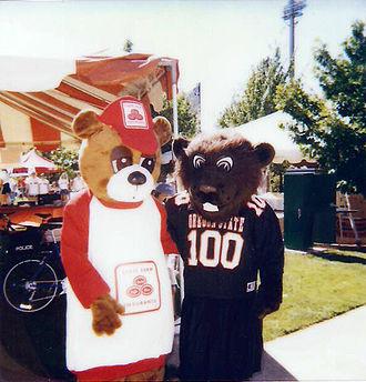 Benny Beaver - 1998 Season - Pregame outside Reser Stadium (Vince Ewert as Benny Beaver)