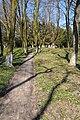 Berezovorudsky park 02.JPG